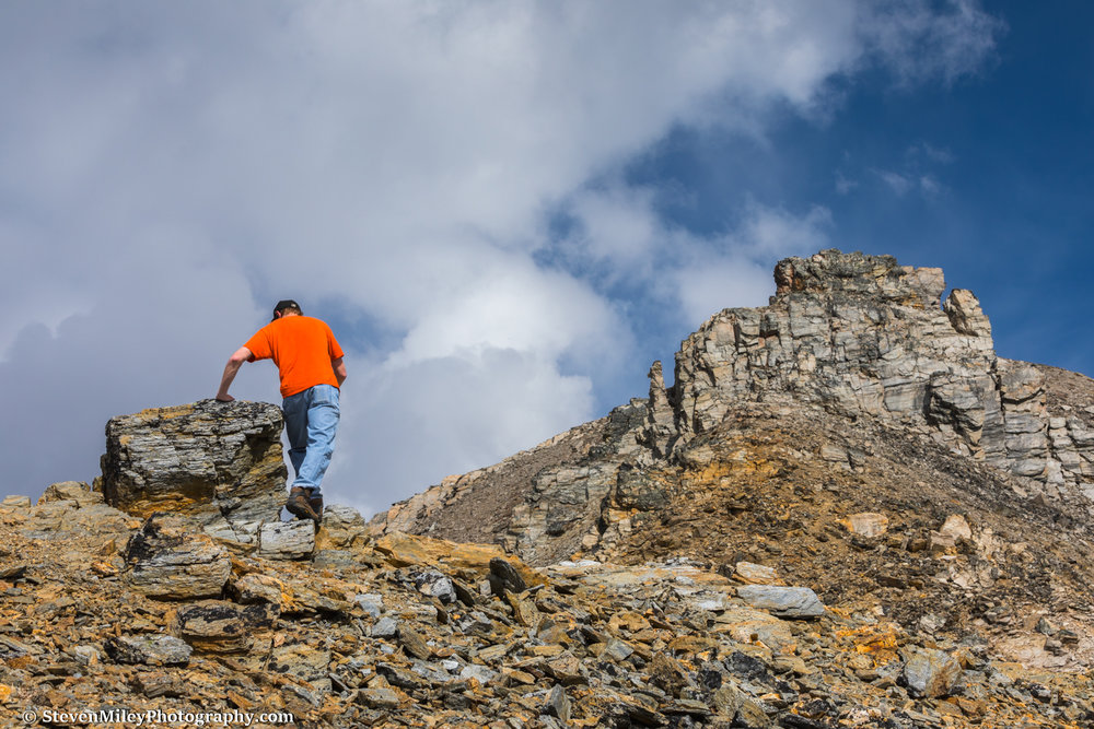 Hiking off-trail above the Savage Alpine Trail, Denali National Park.