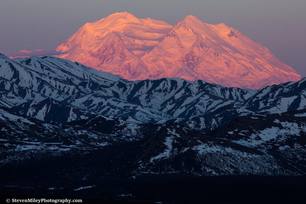 Morning alpenglow on Denali.