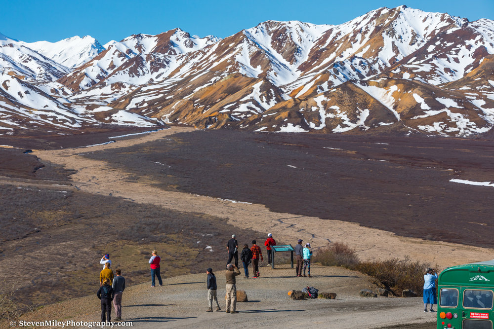 Park visitors at the Polychrome Overlook.
