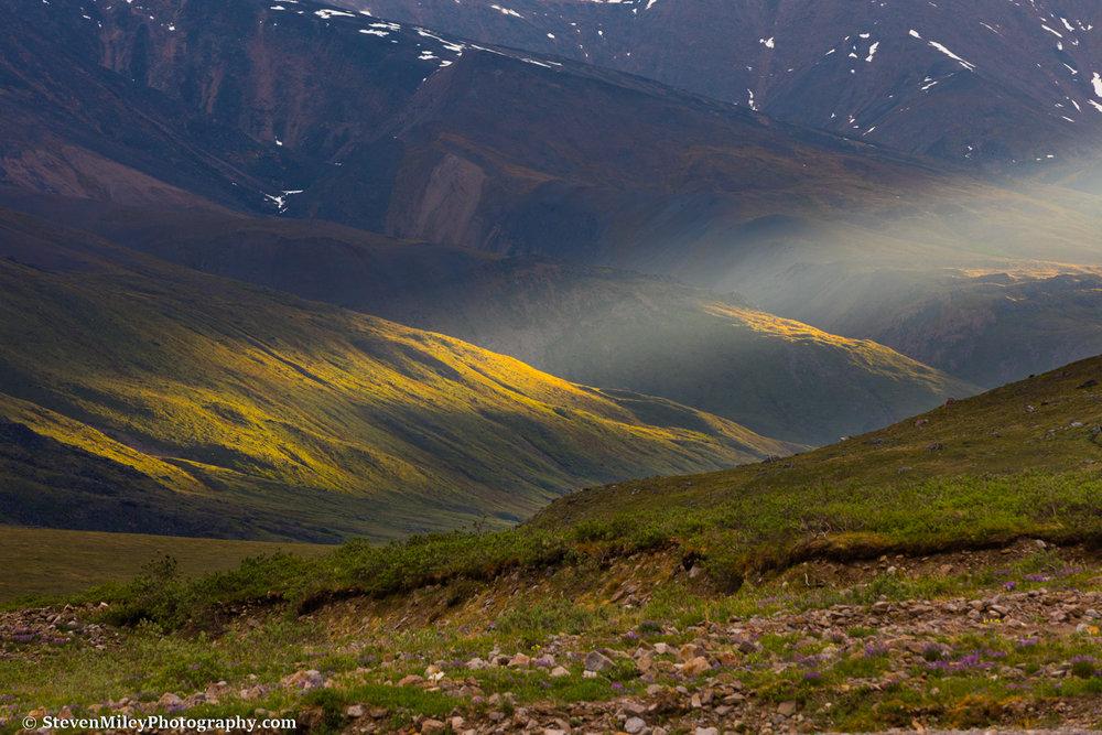 5:14 A.M. - Spotlight on the tundra.