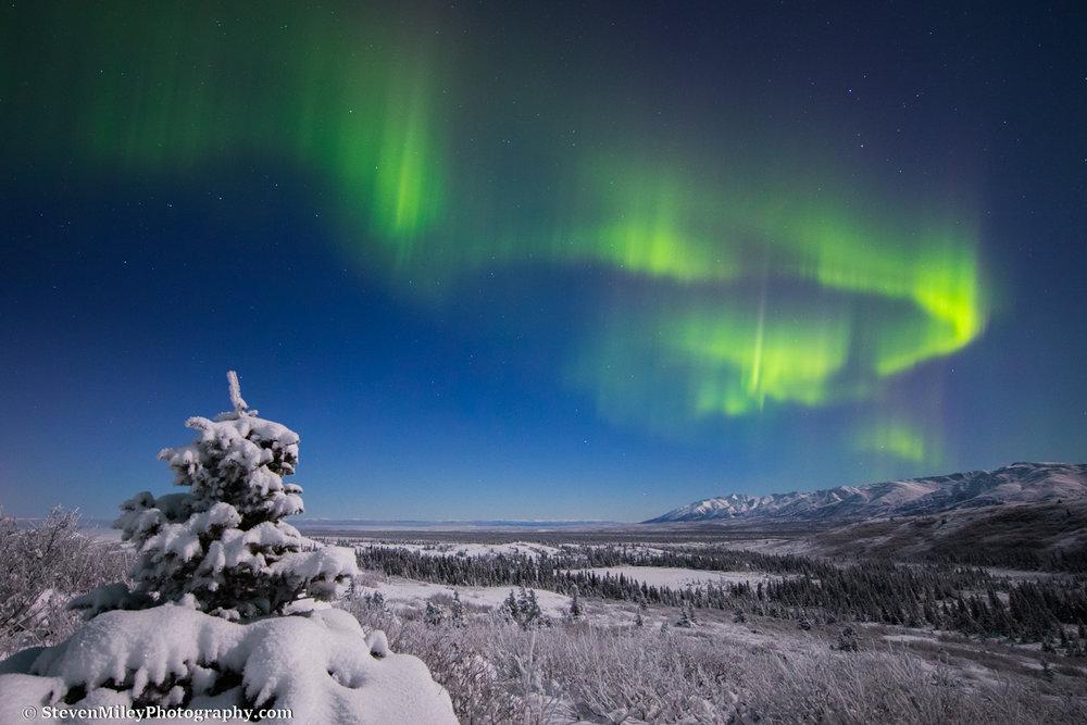 Aurora borealis over Granite Mountain.