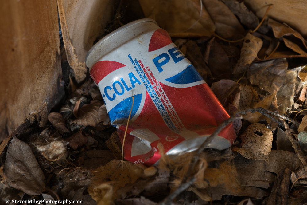 The design on this Pepsi can was used from 1973 to 1991. Several other Pepsi cans and bottles are scattered around the property, suggesting it was the owner's drink of choice. I remember when this Pepsi can design and the Mountain Dew can design were changed when I was a little kid and asking my parents why Pepsi would change them.