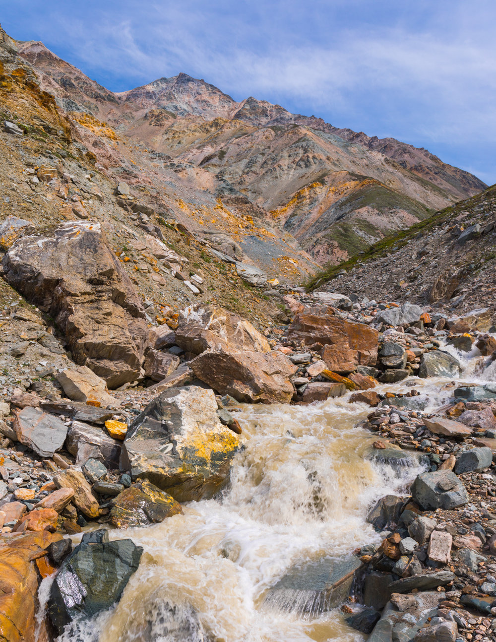 Whistler Creek, Alaska Range
