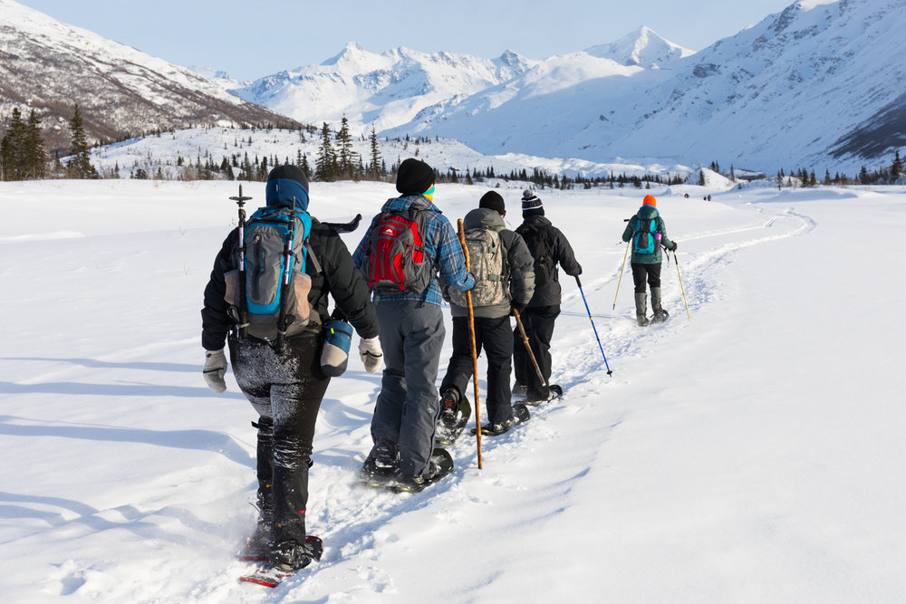 Snowshoeing, Castner Creek, Alaska Range