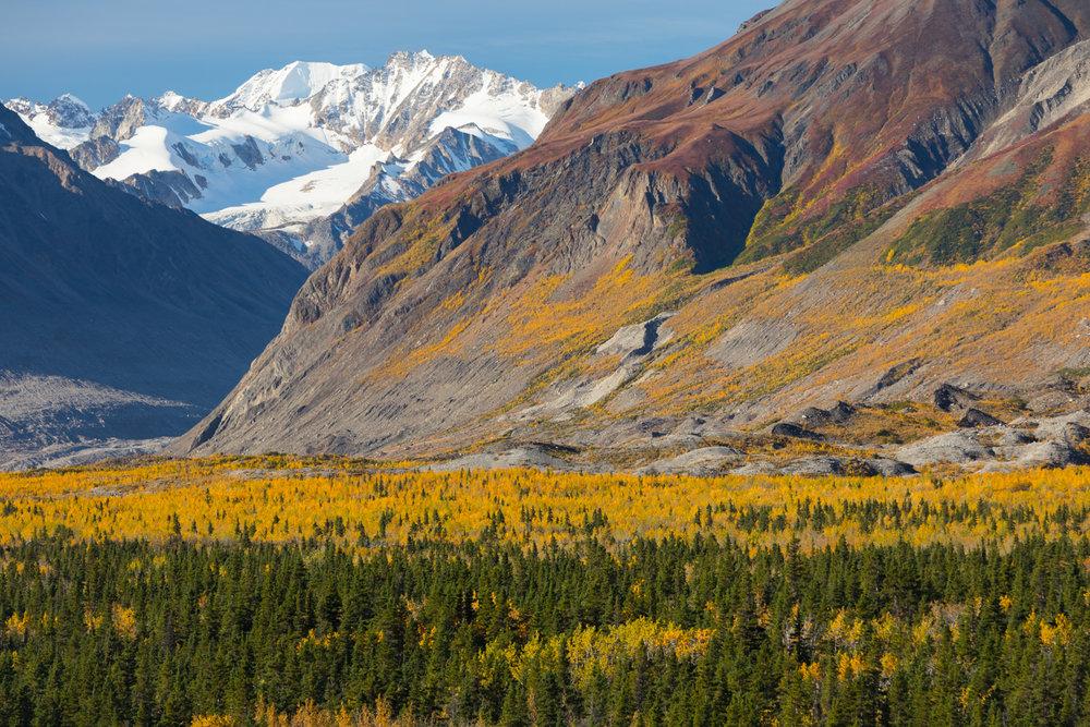 Black Rapids Glacier Valley in Fall
