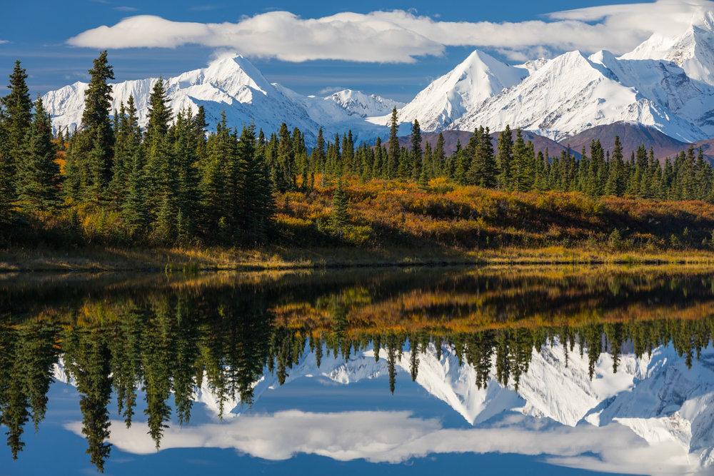 Eastern Alaska Range Reflection, Donnelly Lake