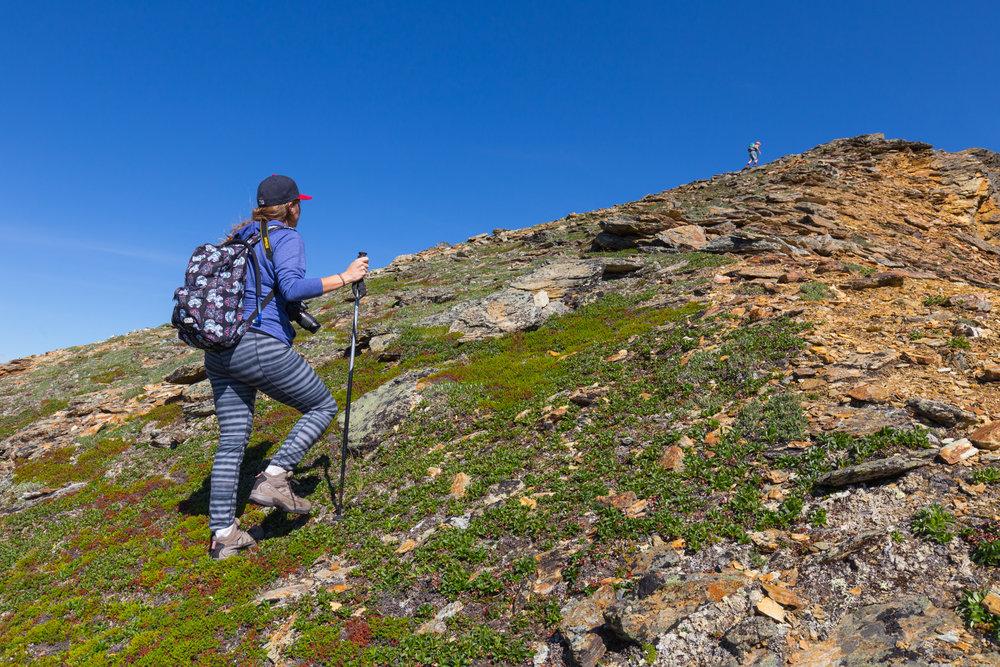 Ascending the alpine slope