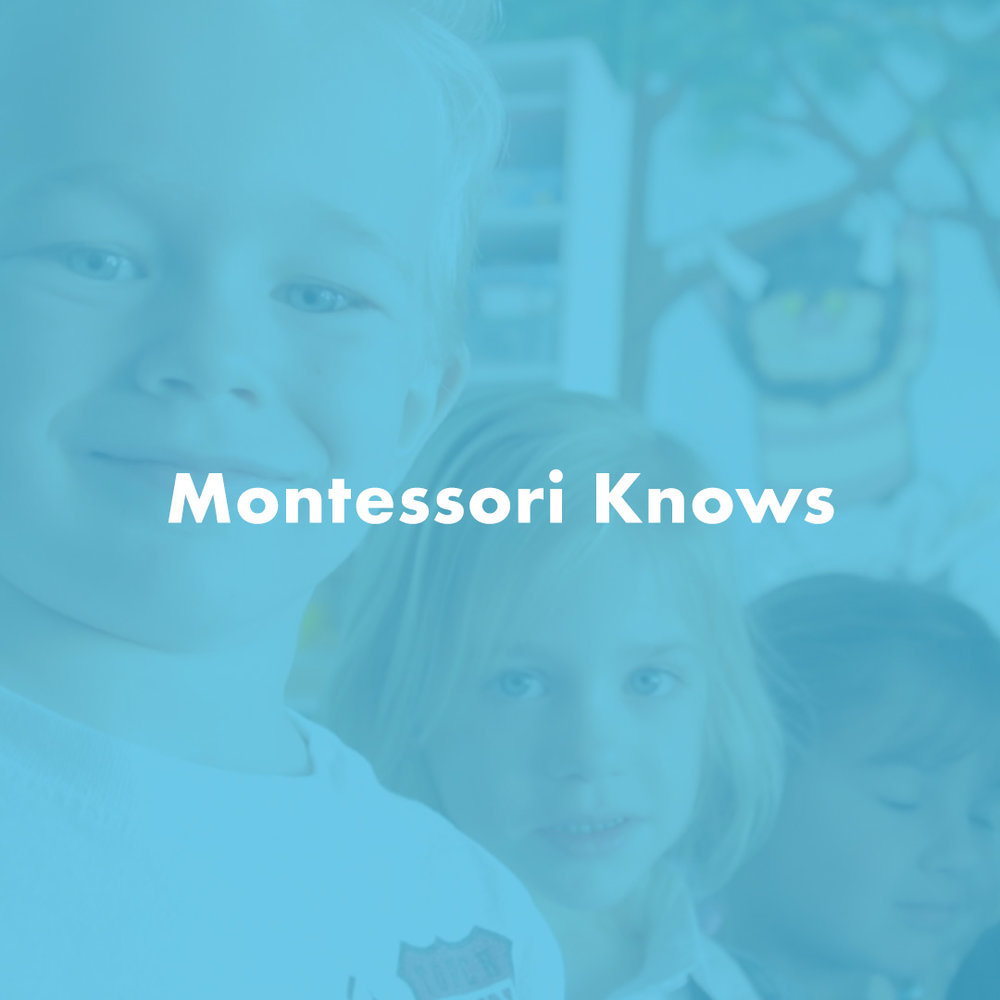 DEARBORN HEIGHTS MONTESSORI CENTER - SMALL BUSINESS : AWARENESS + ENGAGEMENT