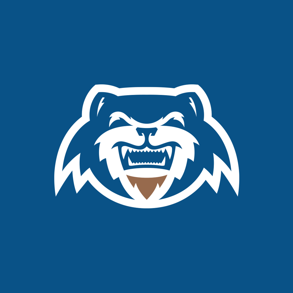 CALUMET WOLVERINES - SMALL BUSINESS : BRAND IDENTITY