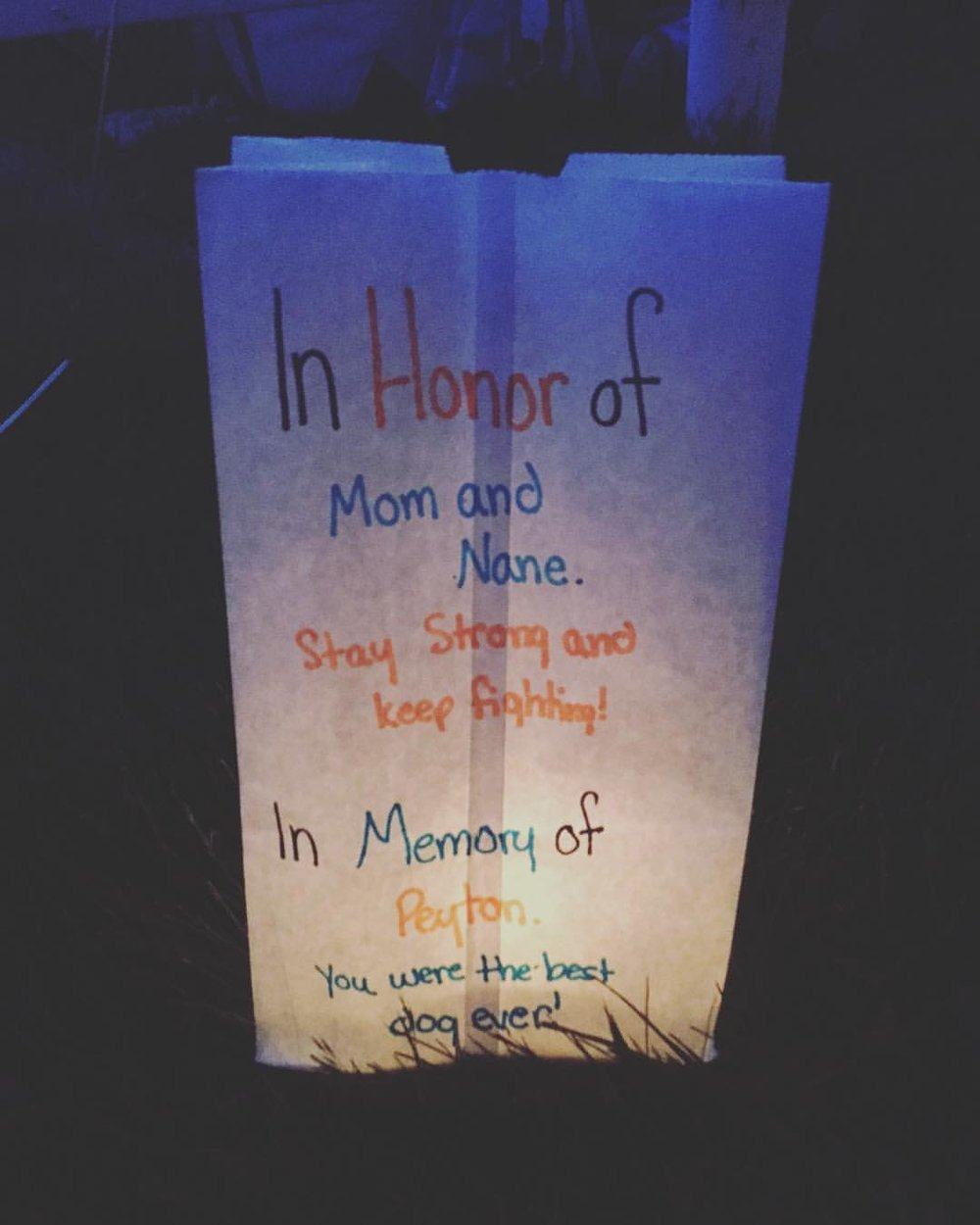 2017 LFTIO Relay for Life Kate Luminary.jpg