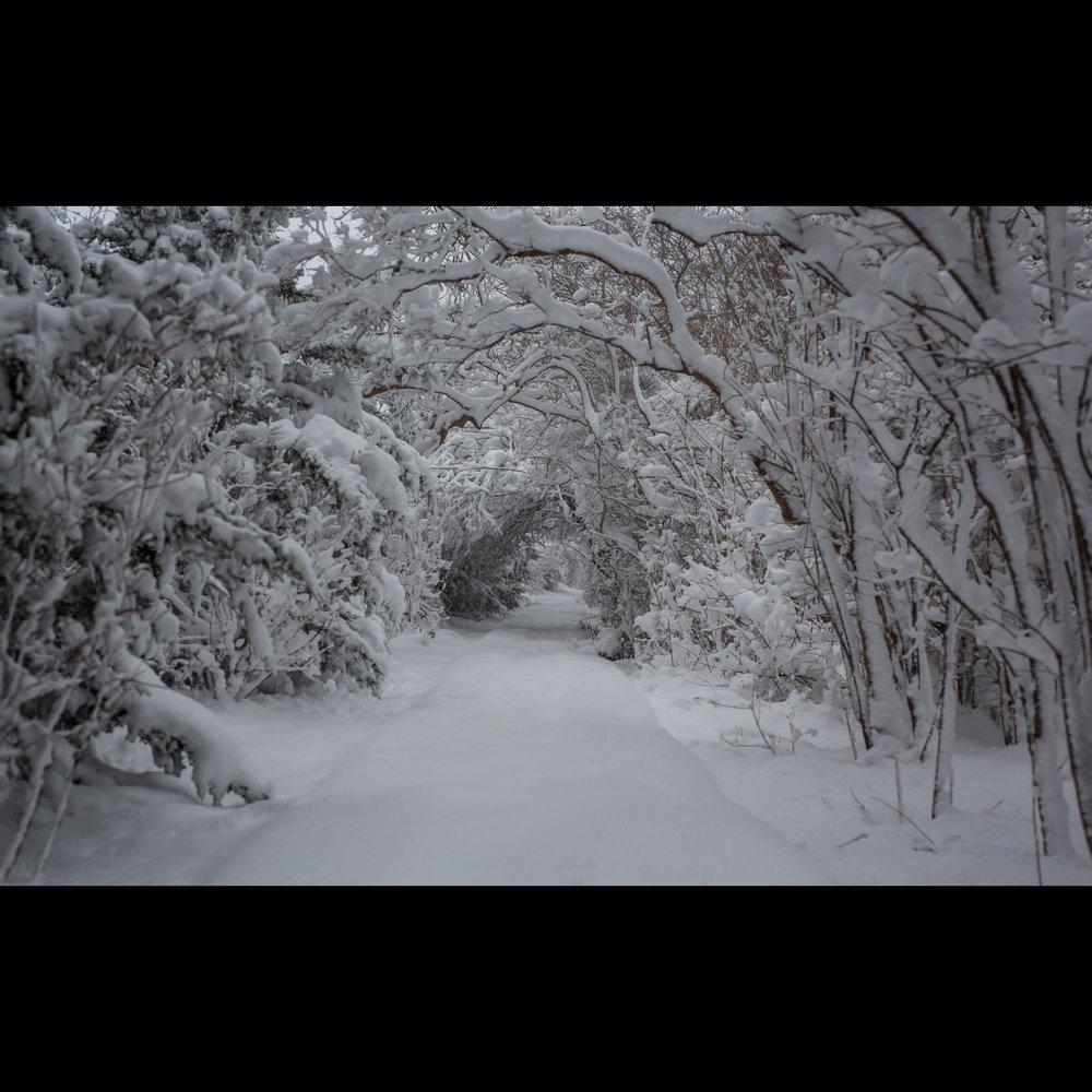 1.7 SNOWY PATH