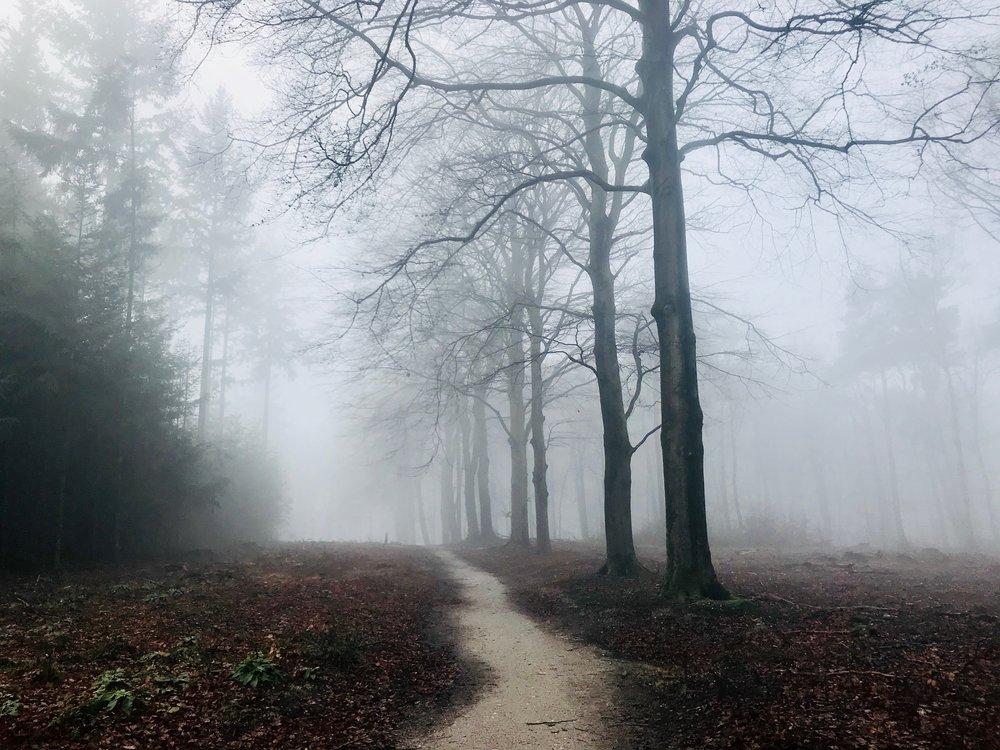 eric-jan-van-dorp-532507-unsplash.jpg