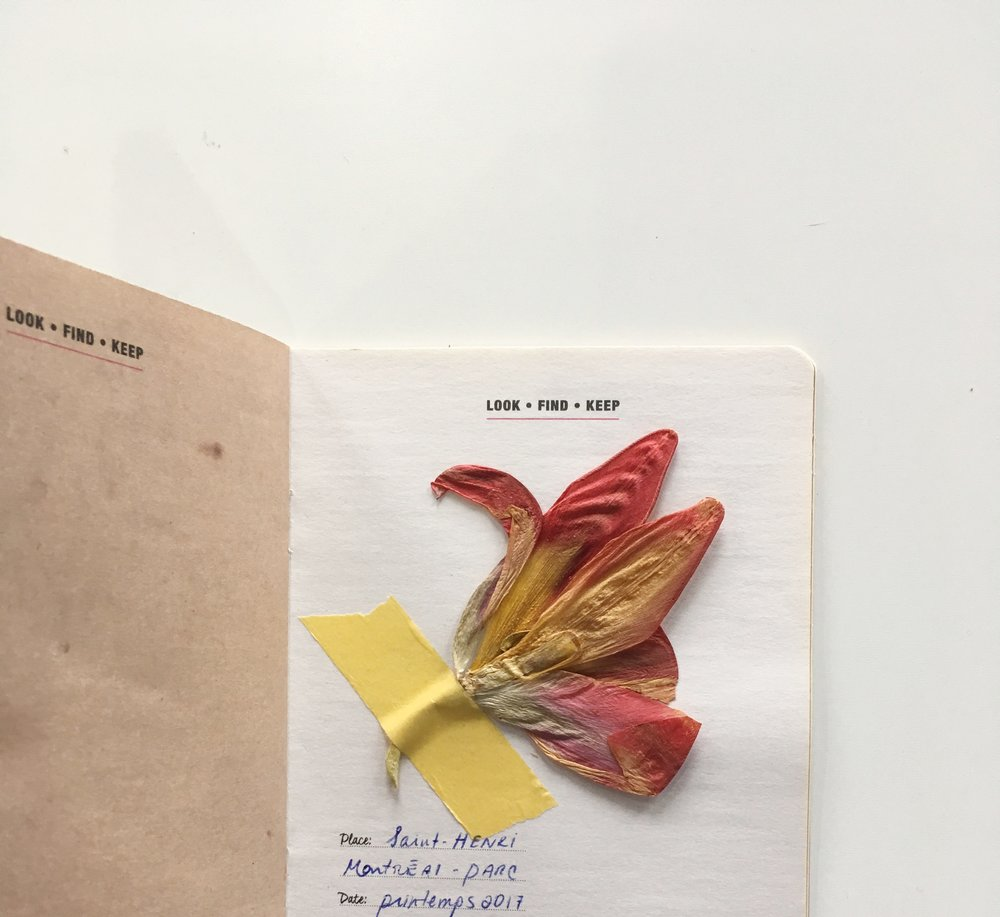Flower booklet