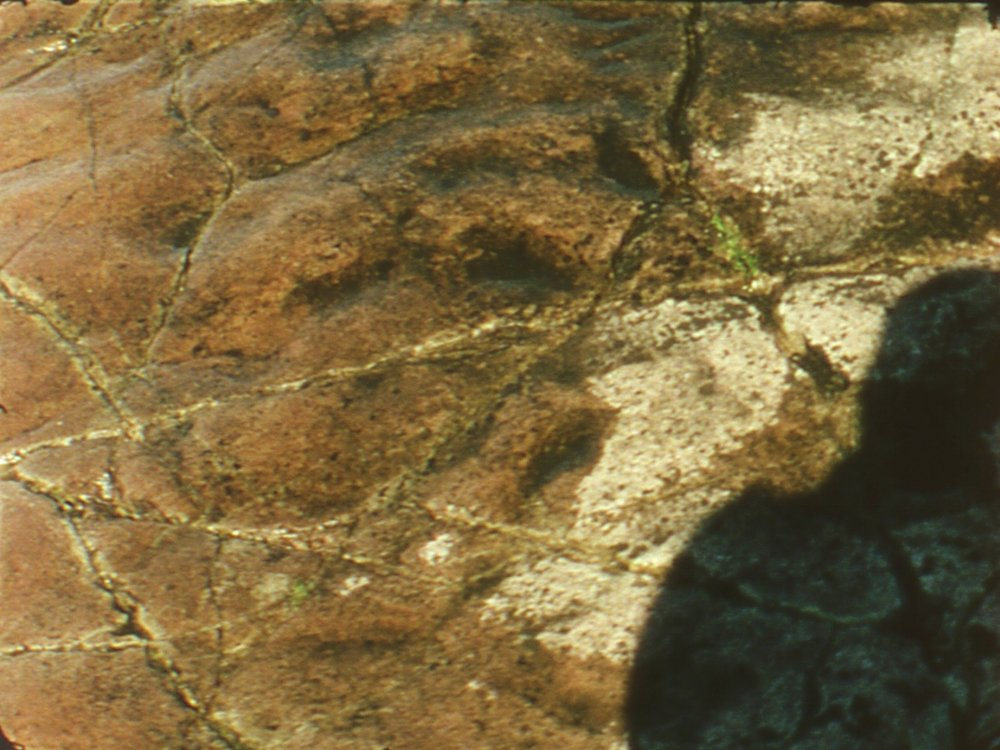 Rock Roll  Josh Guilford  2015 / 3 minutes / USA / 16mm / silent  A camera roll film shot on a small island in Lake Superior. Mapping the surface of a sandstone formation that dates back over 900 million years. Thinking about the slow, relentless action of sedimentation and compaction. Shooting in short bursts so that images might accumulate like falling waves. -JG