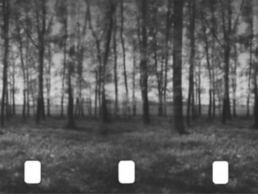 Cinematographie Philipp Fleischmann 2009 / 6 minutes / Austria / dual channel 16mm / silent Fleischmann built a circular camera obscura construction in a forest, 360 degrees around, in which the light enters through a small hole and shines on light-sensitive material. Inside the camera, he placed two 16mm filmstrips side by side: one was exposed to the world outside the camera obscura, the other to the world inside the construction. In this manner, it was possible to film both sides of the environment simultaneously. There are no frame breaks, so no frames, but only one image of a forest, so that a phenakistoscopic effect is achieved during projection. In Cinematographie, film is no longer a sequence of single frames, but rather a total image that emerges all at once. This continuous, simultaneous projection of reality leads to a cinematic standstill, although the projected image is equal to a tracking shot.  -IDFA