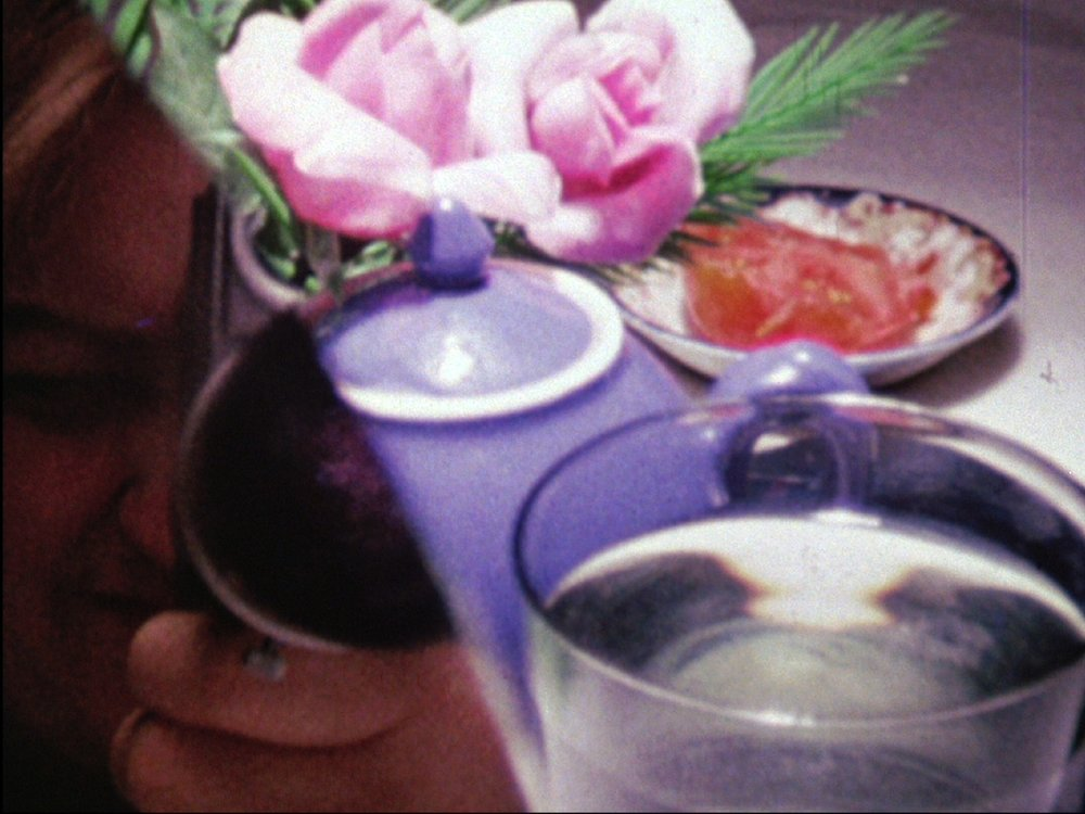 """Water Sark Joyce Wieland 1965 