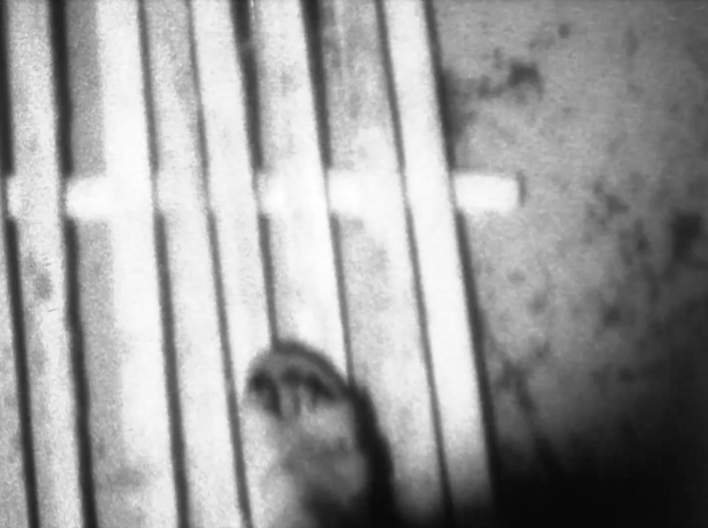 """frame, ways, inflections     Kioto Aoki   2018   3 minutes   USA   16mm   b&w   silent  A piece about the movement of bodies through space for the site-specific installation at 6018 North for the show """"Living Architecture,"""" inspired by architect Bernard Cache's notion of inflections. The film activates two existing works at the gallery: """"Duchamp Door"""" in the basement and Vlatka Horvat's """"Door to Door"""" on the second floor and projected in the closet behind a rearranged version of Horvat's piece. -KA"""