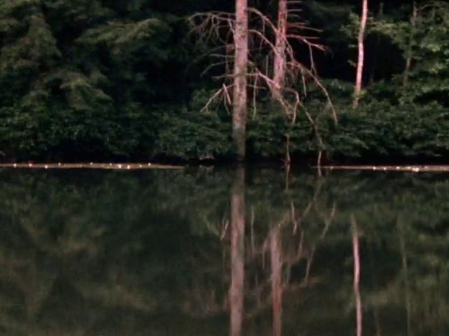 """Porter Springs 3     Henry Hills     1977 