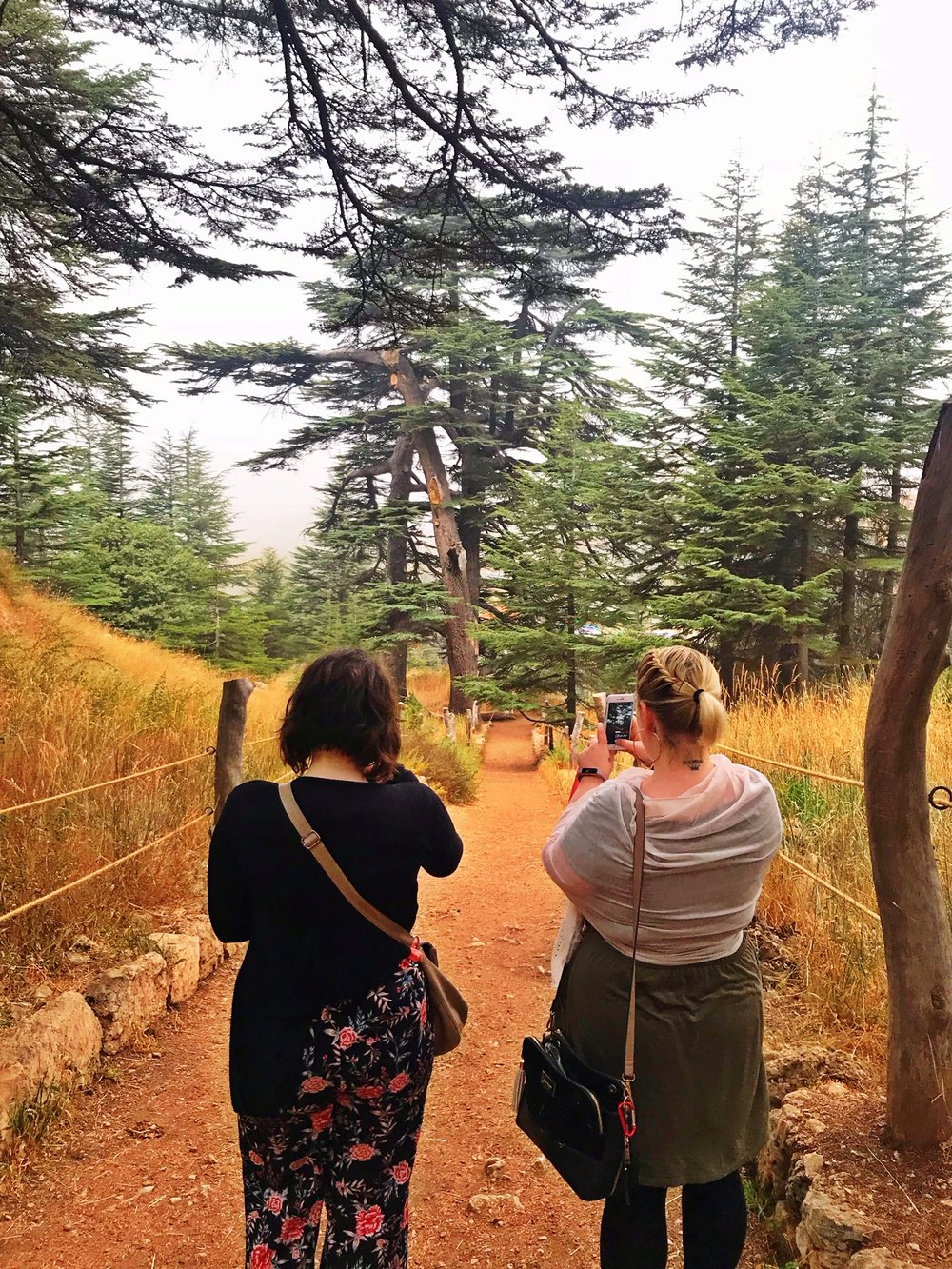 Cedars , Bsharri & Kozhaya Day Tour + Ixis Winery - October 2018