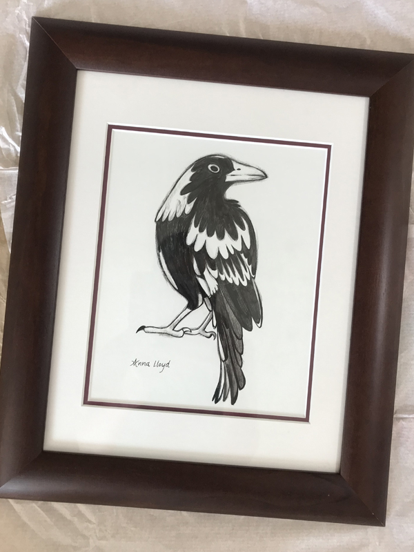 Proud Magpie framed