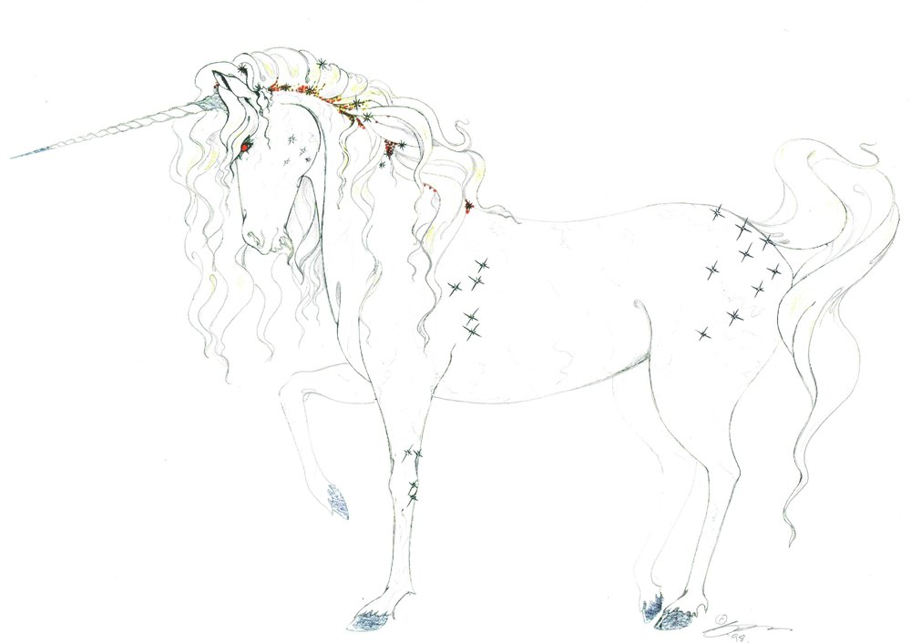 Fibre Optic Unicorn Concept 3.jpg