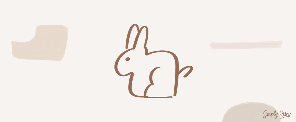 Chinese-Zodiac-Rabbit.jpg