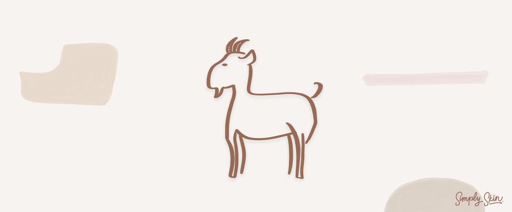 Chinese-Zodiac-Goat.jpg
