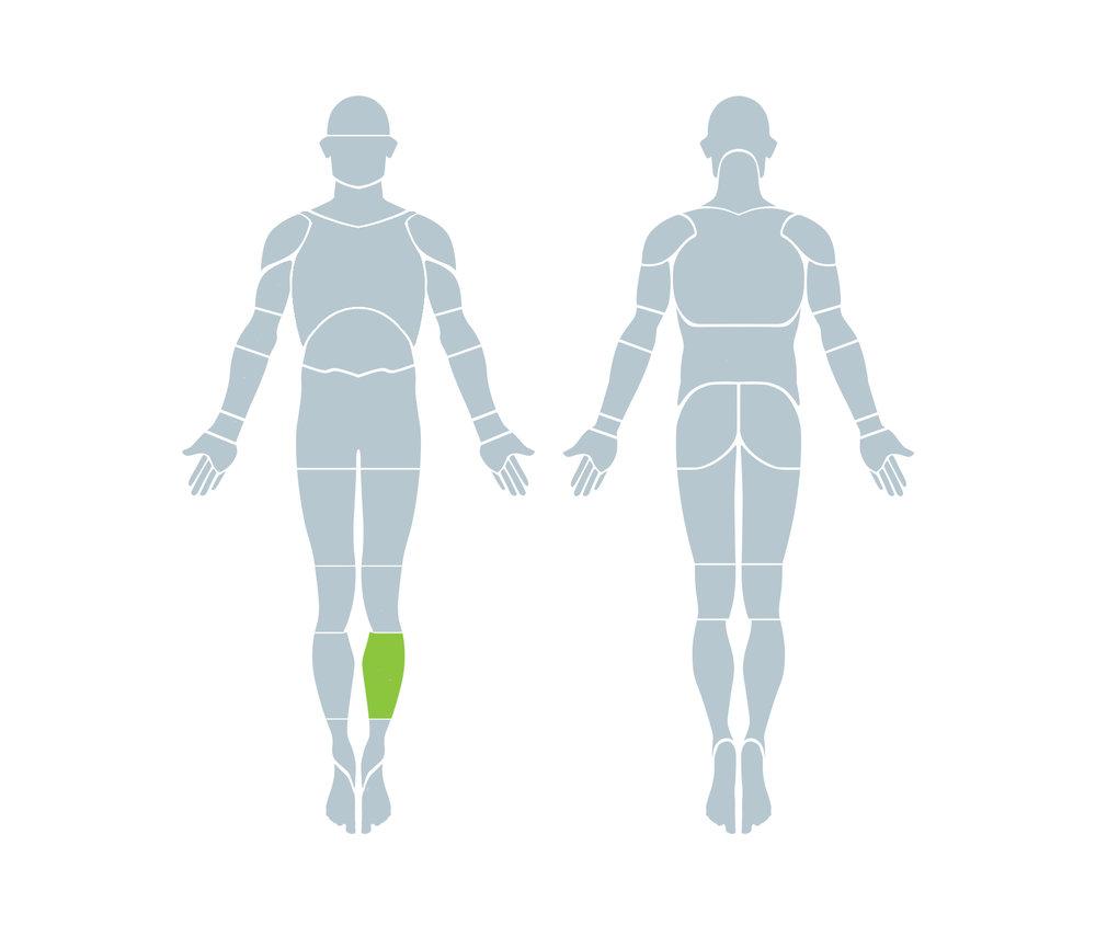 Human_Body12.jpg