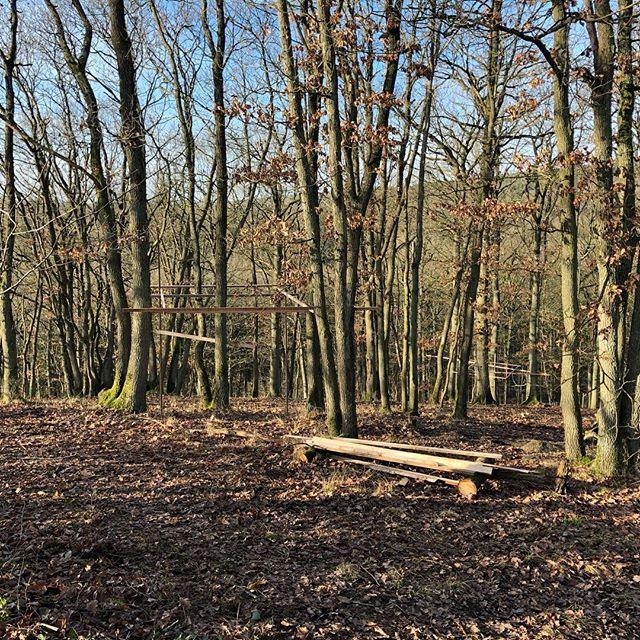 Jazeker gaan wij dat doen! #hamerenharkcorperate #hamerenhark #boomhut #ecologischbouwen #houtbouw #treehouse