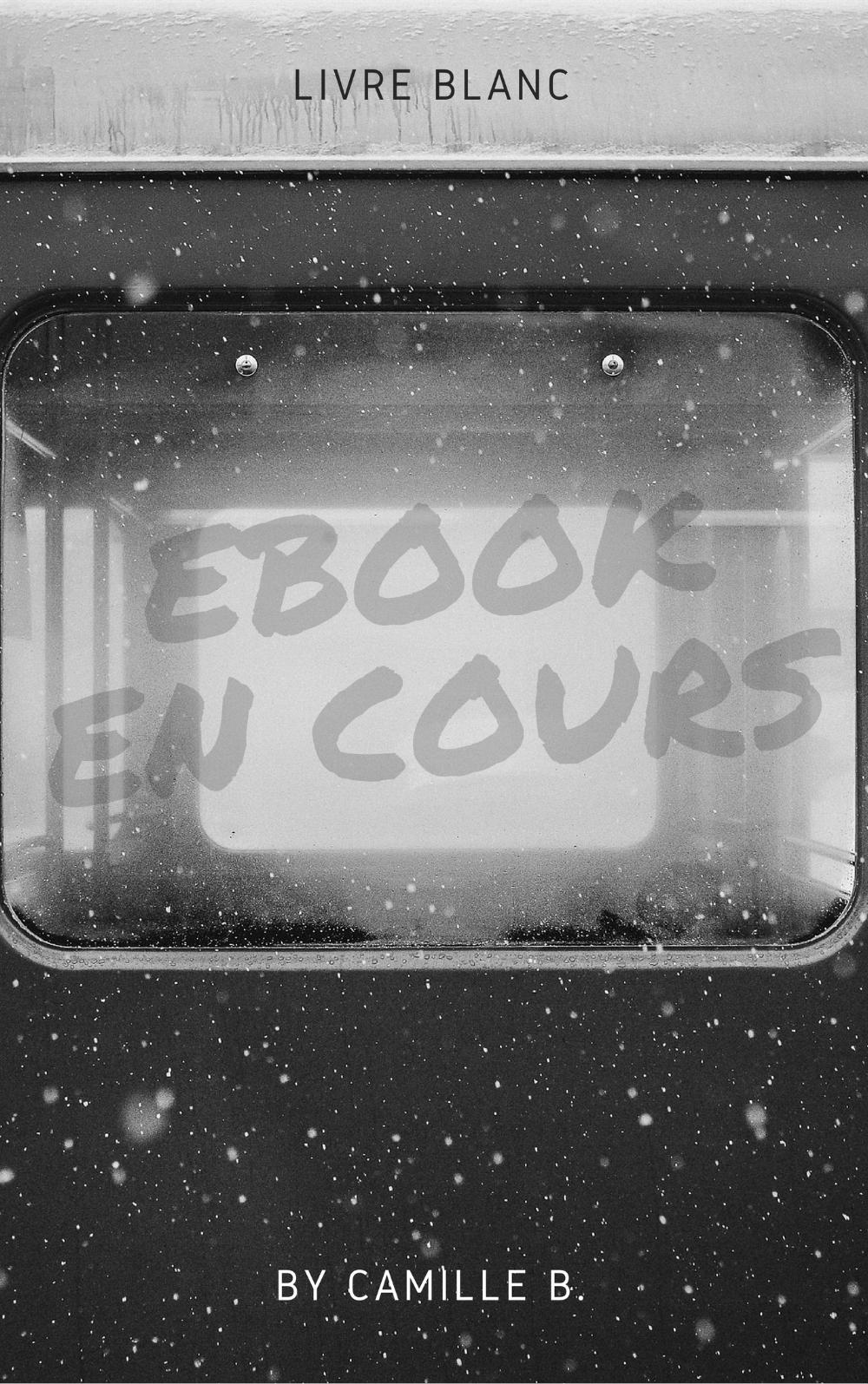 EBOOK à venir.jpg