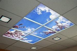 SkyCeil.jpg