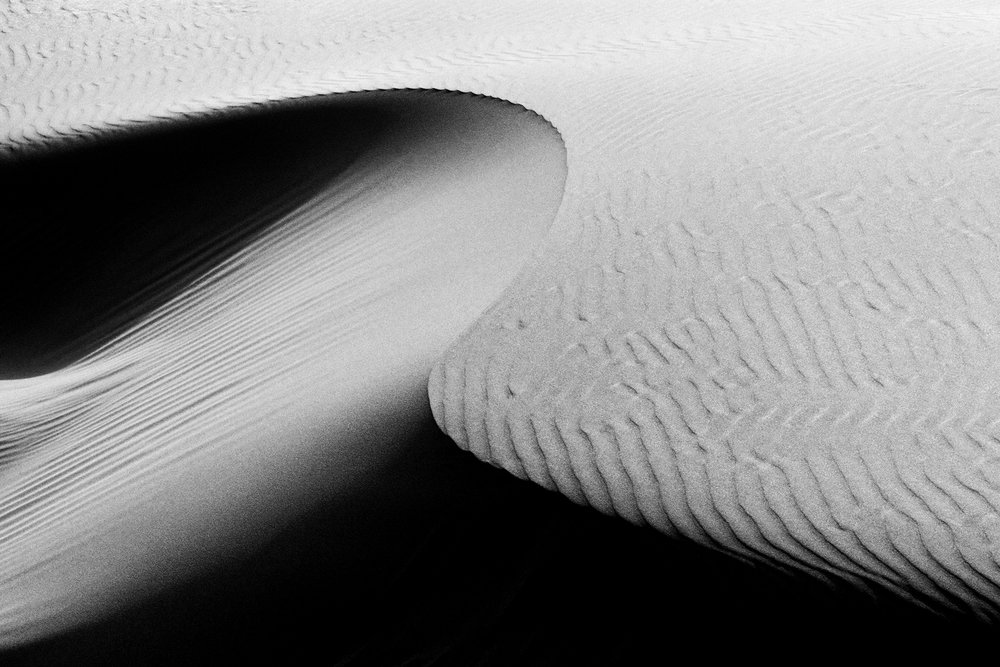 2011-9-10 Dune Detail No 10 - Final 12-17-2015 copy.jpg