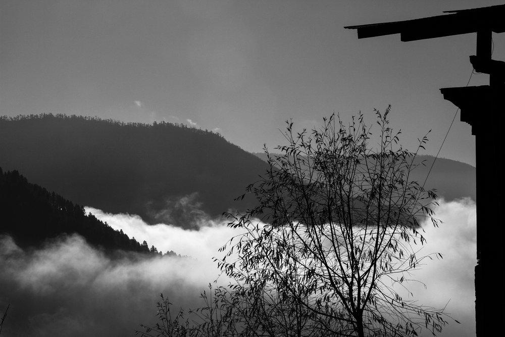 Alter-View_Photographer_Alexandra_Kremer_8.jpg
