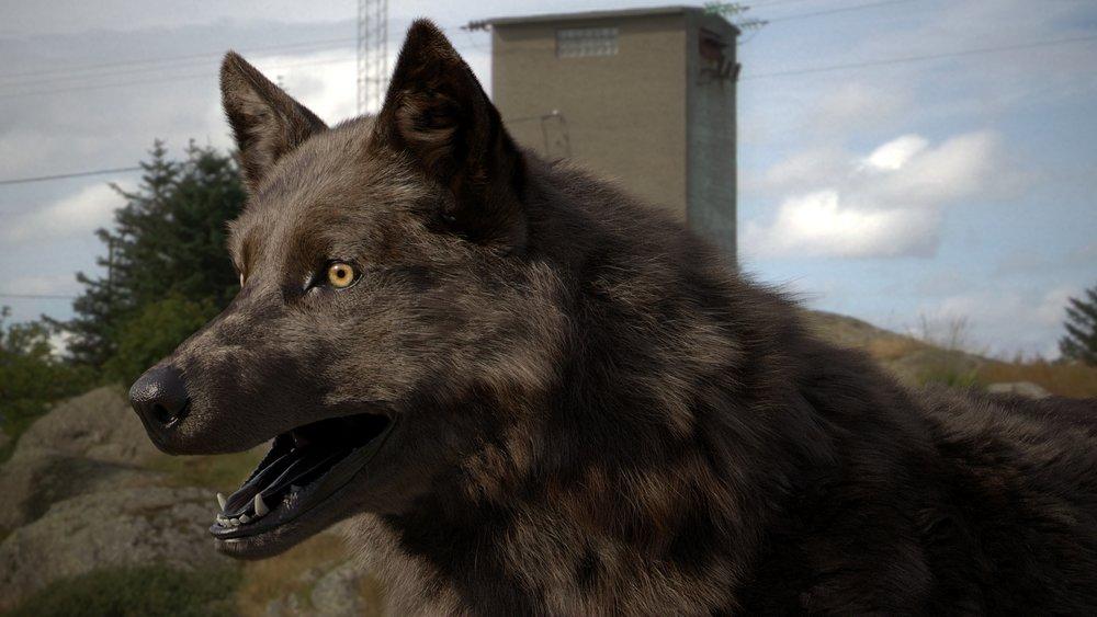 Wolf_3d_model_v024_033_010.jpg