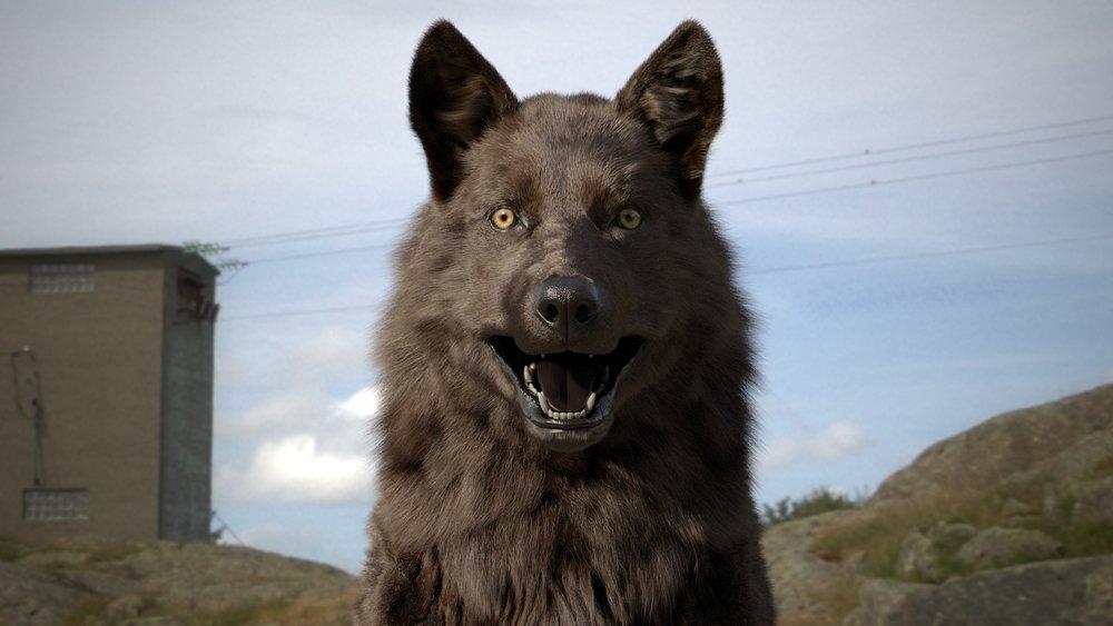 Wolf_3d_model_v024_033_012.jpg