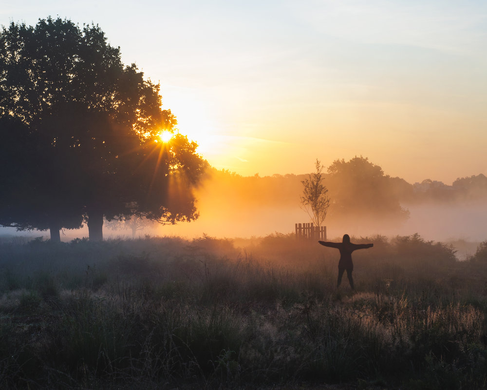 morninghasbrokenWEB.jpg