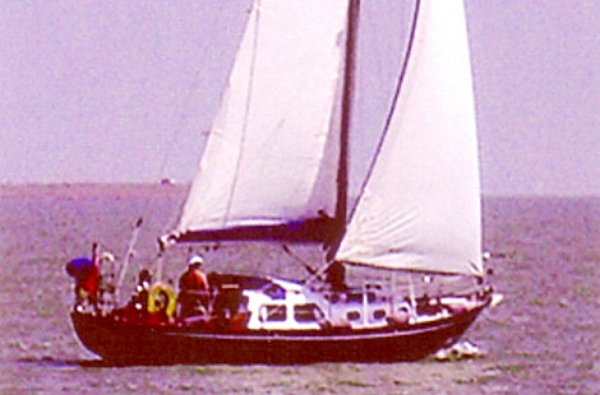 A Nicholson 32 called 'Sea Flirt'