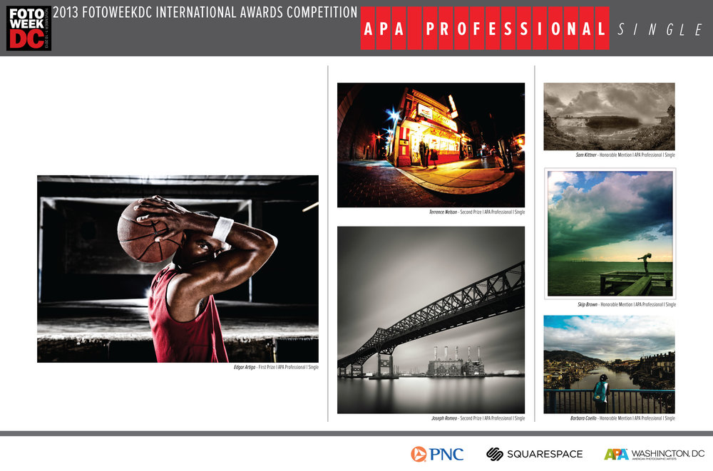 APA-Professional_Single.jpg