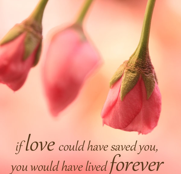 if-love-could-have-saved-you-you-would-have-lived-forever.jpg