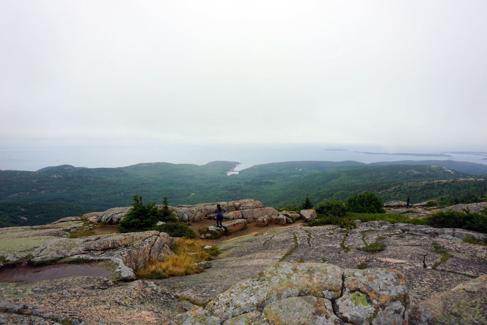 Acadia National Forest 4.jpg