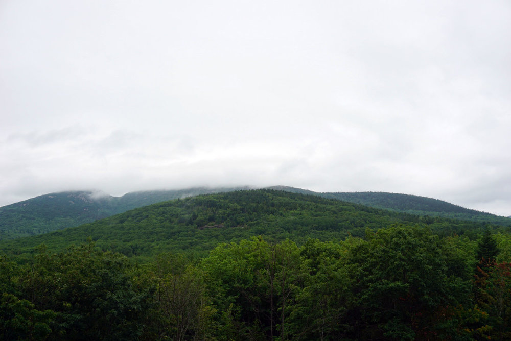 Acadia National Forest 8.jpg