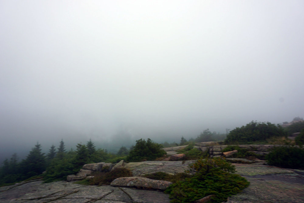 Acadia National Forest 10.jpg