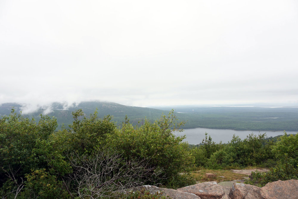 Acadia National Forest 9.jpg