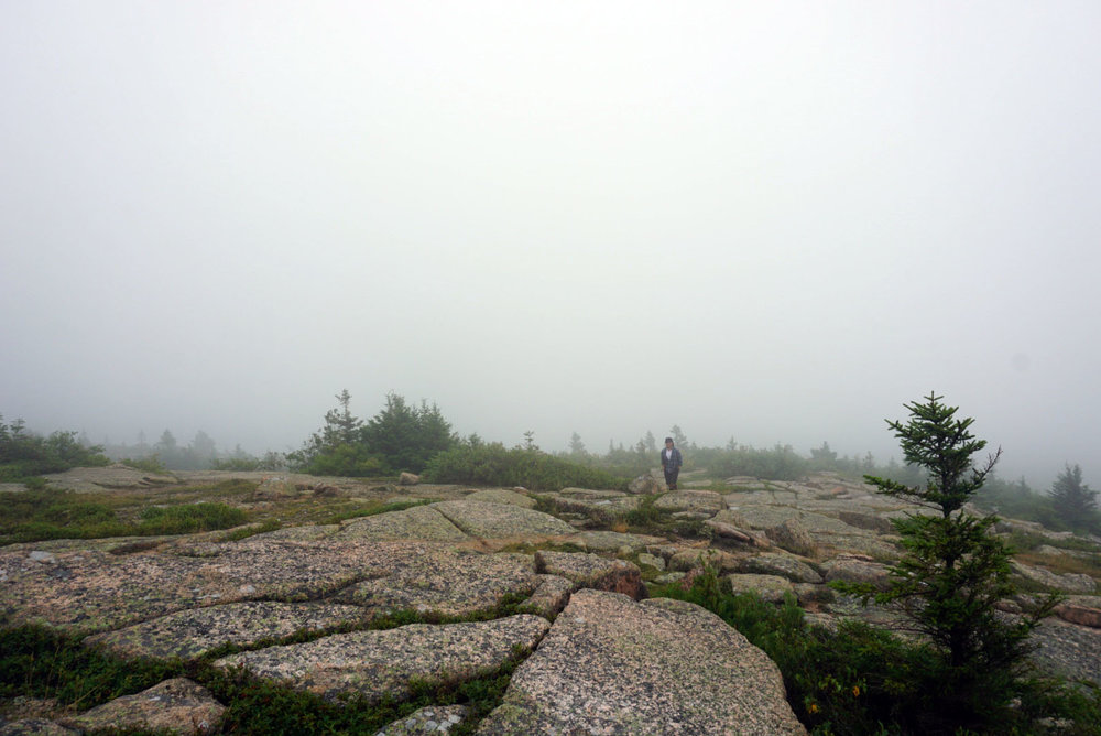 Acadia National Forest 12.jpg