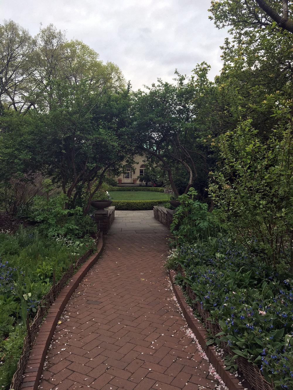 botanic gardens 2.jpg