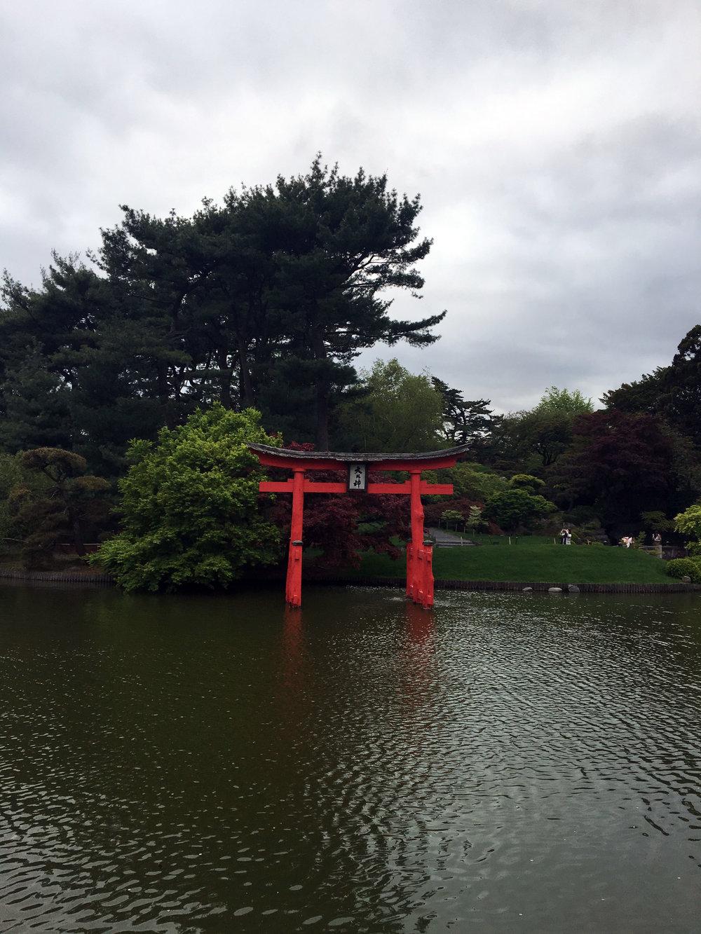 botanic gardens 4.jpg