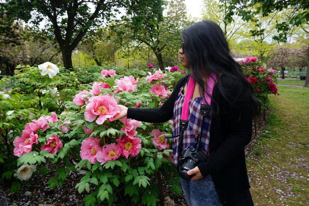 botanic gardens 12.jpg