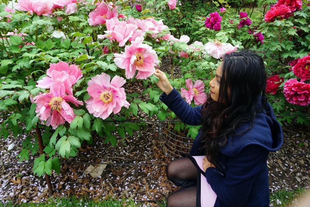 botanic gardens 11.jpg