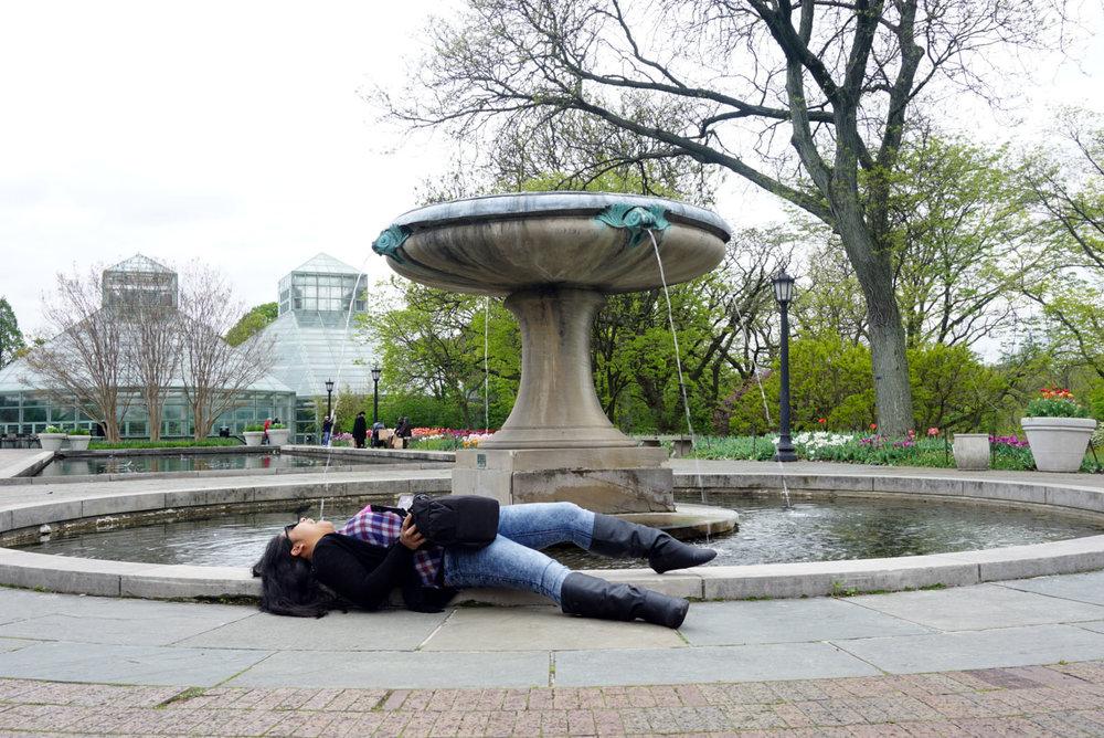 botanic gardenss 3.jpg