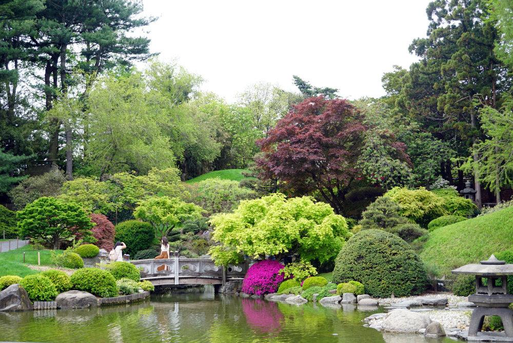 botanic gardenss 10.jpg